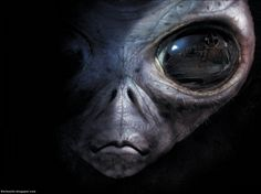 Scary Alien - Other & Entertainment Background Wallpapers on ...