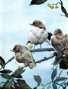 ART & ARTISTS: Edward Detmold, illustrator - part 1