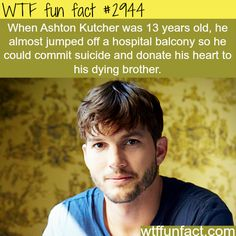 Celebrity facts 13 years old Ashton Kutcher - WTF fun facts Wow Facts, Wtf Fun Facts, True Facts, Funny Facts, Random Facts, Crazy Facts, Random Stuff, Strange Facts, Funny Memes