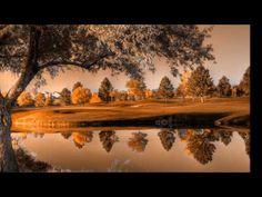 Aleluia (Agnus Dei) - Michael W. Smith - YouTube