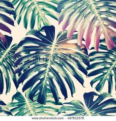 Tropical jungle leaves, monstera seamless floral pattern background