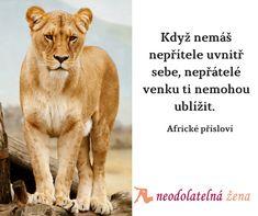 Největší bubáky a nepřátele máme ve své hlavě  #african #motto #citaty #neodolatelnazena #czechia #quotes #life #friends #přítel #successquote #uspech Motto, Animals, Animaux, Animales, Mottos, Animal, Dieren