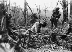 The Philippines WW2 A Japanese soldier impaled on a splintered tree trunk.
