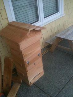 Warre' Hive on Bainbridge Island