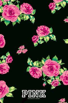 Pink Rose PINK Wallpaper