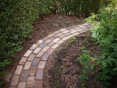 A garden path made from reclaimed bricks