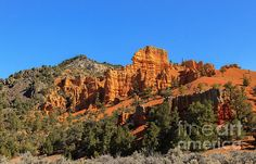 Red Canyon: See more at:  http://fineartamerica.com/profiles/robert-bales.html