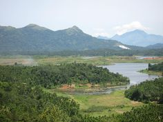 View from Amaryllis in Wayanad