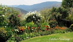 Every second year in spring (around October) Underberg hosts the Open Gardens festival. Farm Gardens, Outdoor Gardens, Garden Pool, Garden Bed, Garden Crafts, Garden Ideas, Farms Living, Trees To Plant, Gardening Tips
