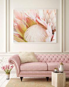 King Protea flower Photography Protea Print, Romantic photography, Romantic Flower Prints, F Protea Art, Protea Flower, Bouquet Flowers, Wedding Flowers, Nursery Art, Girl Nursery, Flower Art Images, Baby Girls, Lounge Decor