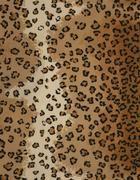 Leopard - GLEN EDEN CARPETS INC.