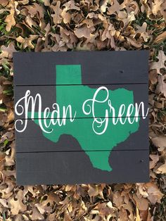 College Student Gifts, College Graduation Gifts, Grad Gifts, College Students, Dorm Signs, Graduation Party Planning, University Of North Texas, Mean Green, Holiday Gift Guide