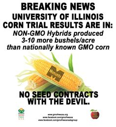 BREAKING NEWS: University of Illinois corn trial results find non-GMO hybrids are competitive or outperform nationally known GMO corn. Non-GMO corn produced 3-10 more bushels per acre. No technology fees. No patents. No seed contracts with the devil. GMO Free USA!  READ: http://www.digitaljournal.com/pr/1598160