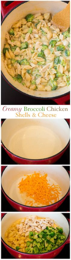Creamy Broccoli Chicken Shells and Cheese - this is made lighter yet it's so incredibly DELICIOUS! Finally a meal the whole family can agree on. It wasn't the best. I would have used a sharper cheese. Pasta Recipes, Chicken Recipes, Dinner Recipes, Cooking Recipes, Healthy Recipes, Pasta Meals, Pasta Food, Budget Recipes, Quick Recipes