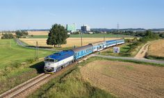 Brejlovec s patrákem na trati Brno - Jihlava.