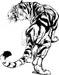 Google Image Result for http://us.123rf.com/400wm/400/400/pauljune/pauljune1011/pauljune101100009/8196876-tiger-drawing.jpg