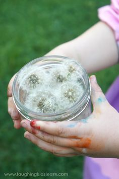 Wishes in a Jar by laughingkidslearn #Kids #Dandelion_Wishes