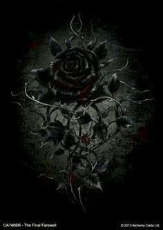 65 Best Black Roses Images In 2020 Black Rose Flower Black