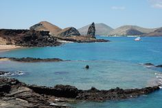 Galapagos Islands may forever change the way your world perception. At times you think you are in a parallel world, and almost all organisms...