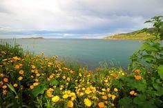 Primavera en la Reserva de la Biosfera de Urdaibai