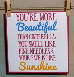 Bridesmaids Movie Quote, you're more beautiful than Cinderella, you smell like pine needles and your face is like sunshine.