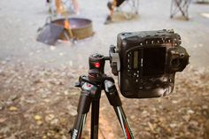 Manfrotto Carbon Fiber BeFree product review