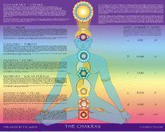 Chakra Posters: Rainbow Chakra Poster