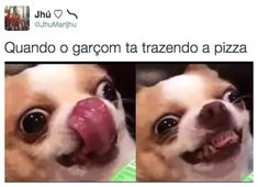 When Youre Starving and See Food Coming - Food Meme - When Youre Starving and See Food Coming funny memes meme funny quotes humor hungry funny animals Really Funny Memes, Crazy Funny Memes, Stupid Funny Memes, Funny Relatable Memes, Haha Funny, Funny Pics, Funny Quotes, Happy Memes, Fuuny Memes