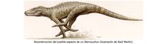 Iberosuchus, a land dwelling crocodilian from the Iberian Peninsula, 40 MY old.