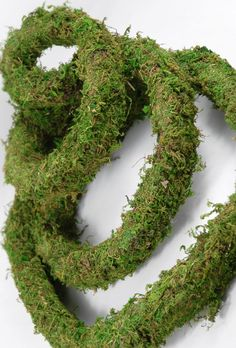 Wired Preserved Moss Garland 10ft