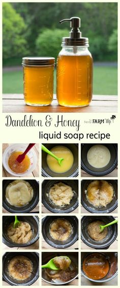 Dandelion and Honey Liquid Soap Recipe