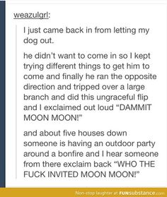 Dammit Moon Moon! This moon moon thing has gone to great lengths, but I love it
