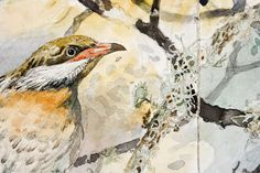 John Wolseley - The Wood The World and The Parrot Roslyn Gallery Sydney 2006 - Roslyn Gallery Summer Painting, Environmental Art, Australian Artists, Wildlife Art, Art Portfolio, Animal Paintings, Watercolor And Ink, Bird Art, Landscape Art
