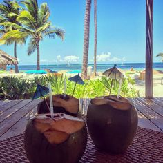 Perfect view from Catalonia Royal Bavaro in the Punta Cana and a coconut drink. What's better?