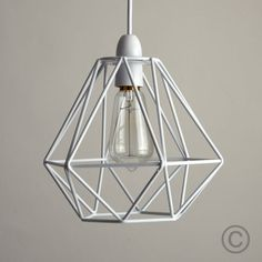 Modern-Industrial-Style-Metal-Wire-Frame-Ceiling-Light-Shades-Squirrel-Cage-Bulb