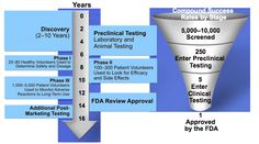 There are four phases in testing new drugs in the United States. It begins by checking for safety (I), checking for efficacy (II), confirming the findings in large scale populations (III), and testing long-term effects in diverse patient population (IV).
