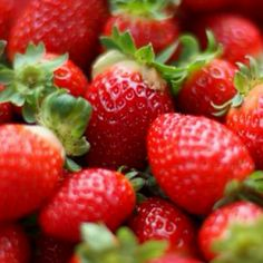 Blueberries and strawberries help reduce cognitive decline in the elderly, reveals research published in Annals of Neurology, a journal of the American Neurological Association and Child Neurology Society. Summer Snacks, Easy Snacks, Healthy Snacks, Healthy Eating, Clean Eating, Beautiful Fruits, Beautiful Things, Strawberry Plants, Deserts