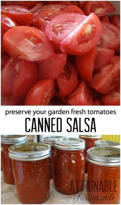 """This simple salsa recipe is a good """"beginner"""" recipe for home canning. It's one of our favorite ways to preserve the summer tomato bounty. Click to give it a try!"""