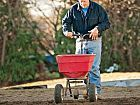How to Rejuvenate a Dying Lawn
