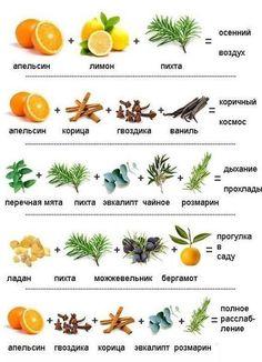 Смешиваем эфирные масла и наслаждаемся результатом / Популярная медицина