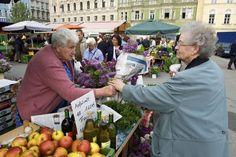 Pensioenen: Waarom kan Oostenrijk wat wij niet kunnen?