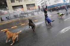 Un manifestante es rociado por un cañón de agua de la policía antidisturbios durante una protesta convocada por los estudiantes en Santiago de Chile para exigir mejoras al sistema de educación superior