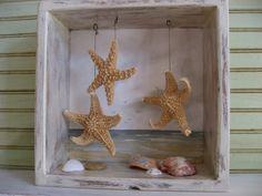 Sea shell shadow box (say THAT three times fast!)