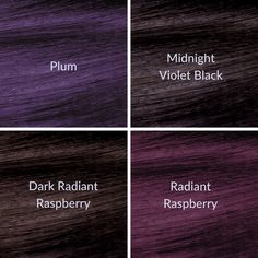 Which NEW ion™ Color Brilliance™ Violet Series Permanent hair color would you try?  Our popular long-lasting formula is now available in 4 NEW trendy shades: Dark Radiant Raspberry, Radiant Raspberry, Midnight Violet Black and Plum!