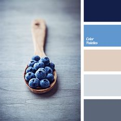 FAVE Bright deep blue and shades of gray are ideal for creating the basic background in a bedroom, and beige and dark blue can be successfully used for accents..
