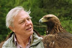 Attenborough with a golden eagle (Life of Birds, 1998) - © Rob Cousins