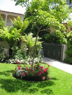 flower bed ideas - Garden Ideas To Hide Septic Tank