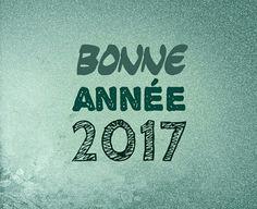 Happy New Year 2017 // Bonne année 2017 - First article online, enjoy! - www.ifwsblog.tk