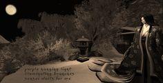 daisan & photo by M. Nakazato LaFreniere, Wandering Spirit Challenge #1, Carpe Diem Haiku Kai, Chèvrefeuille, #haiku, #poetry, poetry, haiku, second life, secondlife, Kayla Woodrunner,  http://cactushaiku.com/wandering-spirit-challenge-yozakuras-daisan/