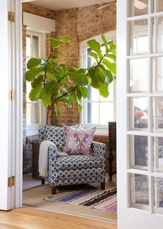 Fig Tree + Layered Rugs + Exposed Brick Walls / Home Tour Of Stephanie Bradshaw / The Glitter Guide / Photography by Stacy Zarin-Goldberg Up House, Cozy House, Home Living Room, Living Spaces, Feminine Apartment, Ficus Lyrata, Interior Exterior, Interior Design, Brick Interior